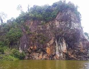 A Slice of Nature at Bukit Batok Nature Park